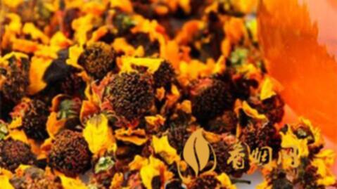 天山雪菊的美容功效 天山雪菊的作用是什么